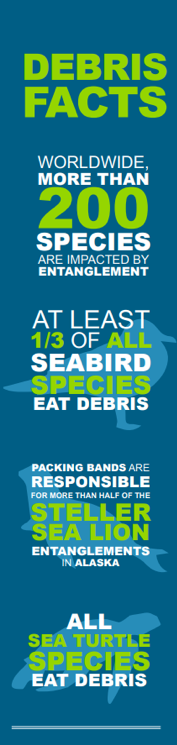 debris facts graphic by ocean conservancy