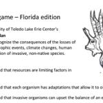 image: invasive species activity