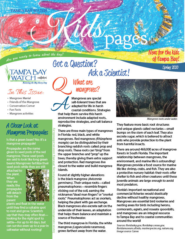 image: kids pages news