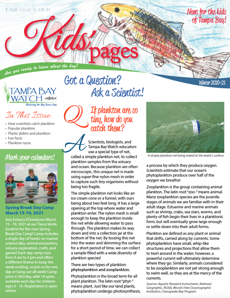 kids pages newsletter
